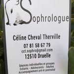 Mme Céline  Cheval Therville